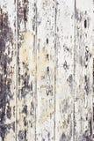 Doorstaan hout Stock Afbeelding