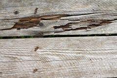 Doorstaan houten plankendetail Stock Foto