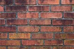 Doorstane bakstenen muur Royalty-vrije Stock Foto's