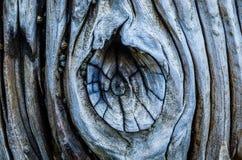 Doorstane breker, Suyllivans-Eilandsc, de Atlantische Oceaan stock foto