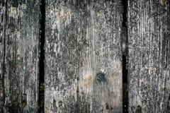 Doorstane Dekraad Stock Foto
