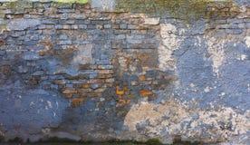 Doorstane gebarsten blauwe muur met witte vlekken Stock Afbeeldingen