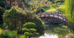 Doorstane houten gebogen brug over een vijver stock foto
