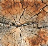 Doorstane houten korrel Stock Foto