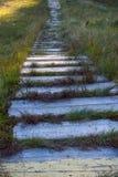 Doorstane houten walkpath met gras in bos Lege houten weg in perspectief Landelijke oude weg Richting en reisconcept stock foto's