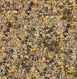 Doorstane Materiële Textuur Royalty-vrije Stock Foto