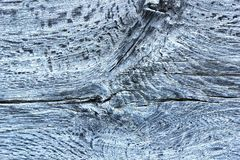 Doorstane oppervlakte van eiken houten plank royalty-vrije stock foto