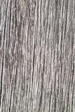 Doorstane oude grijze gebarsten houten achtergrond stock fotografie
