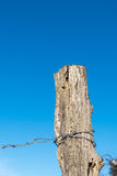 Doorstane oude post met barbwire Stock Foto's