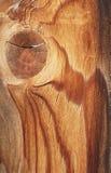Doorstane Plank 2 Stock Afbeelding