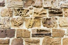 Doorstane steentextuur Stock Afbeeldingen