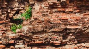 Doorstane textuur van bevlekte oude donkere bruine en rode bakstenen muur B Stock Foto