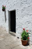 Doorway with bright flowers Stock Photography