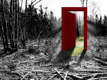 Clearcut Exit Royalty Free Stock Photo