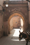Doorway of Marakesh with donke Royalty Free Stock Photo