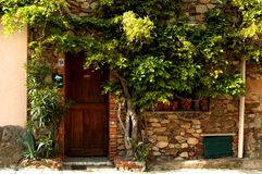Doorway with vegetation. A recessed doorway with vines and climbing vegetation around it Stock Images
