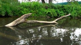 Doorweekt water Royalty-vrije Stock Fotografie