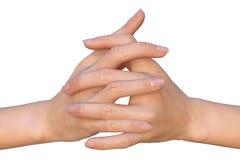 Doorweven vingers met mooie natuurlijke manicure Stock Fotografie