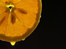 Doorzichtige Sinaasappel stock foto