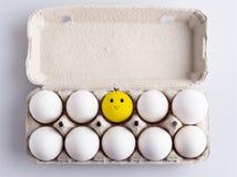Doos met eieren Royalty-vrije Stock Afbeelding
