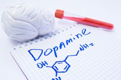 Dopamina del neurotrasmettitore in cervello Modello anatomico del cervello 3D, tubo della prova di laboratorio con sangue e nota, fotografia stock