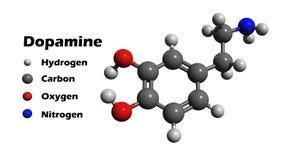 dopamine royalty-vrije illustratie