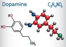 Dopamine DA molecule. Structural chemical formula and molecul. E model. Vector illustration royalty free illustration