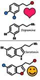 Dopamine et sérotonine Photo libre de droits