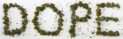 Dopant écrit avec la marijuana Photographie stock libre de droits