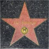 Dopasowywa Emerson ` s gwiazdę na Hollywood spacerze sława Obrazy Stock
