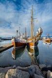 dopatrywanie łódkowaty wieloryb zdjęcie royalty free