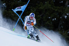 DOPFER Fritz in Audi Fis Alpine Skiing World-Schale Men's riesiges S lizenzfreie stockfotos