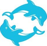 dophins två arkivfoto