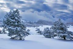 Dopo la bufera di neve a Fotografia Stock Libera da Diritti