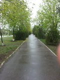 Dopo la molla della pioggia fotografie stock libere da diritti