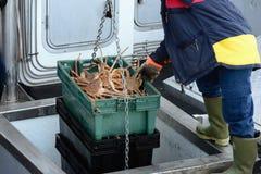Dopo la pesca immagine stock