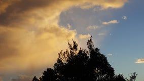 Dopo la tempesta Fotografie Stock