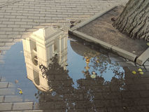 Dopo pioggia Fotografia Stock Libera da Diritti