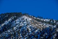 Dopo pioggia persistente sulla montagna di San Gabriel Fotografia Stock