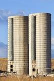 Doppelbauernhofsilos Lizenzfreie Stockbilder