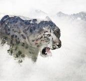 Doppelbelichtung eines Schneeleoparden und -berge lizenzfreie stockbilder