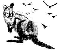 Doppelbelichtung, Känguru für Ihr Design, Konzept der wild lebenden Tiere stock abbildung