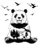 Doppelbelichtung, Pandabär und Waldlandschaft lizenzfreies stockbild