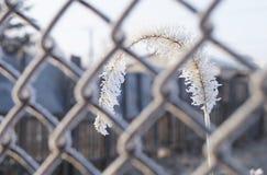 Doppelpunkt schloss hinter Gittern stockbilder