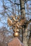 Doppelt-vorangegangener Adler Stockfoto