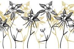 Doppelte Akeleiblumen Sammlung Hand gezeichnete Blumen und Anlagen botanik set Universalschablone f?r Gru?karte, Webseite, Hinter lizenzfreie abbildung