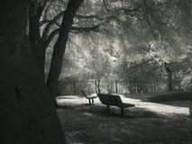 Doppelte Einsamkeit Stockfotos