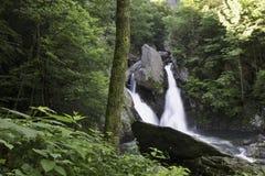 Doppelter Forest Waterfall im Sommer lizenzfreie stockfotografie