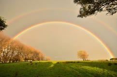 Doppelter Regenbogen Stockbild
