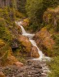 Doppelter Wasserfall Mt-St. Helens Stockfotografie